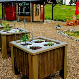 growing food in small spaces