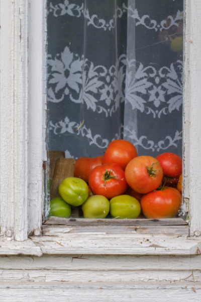 windowsill fruit