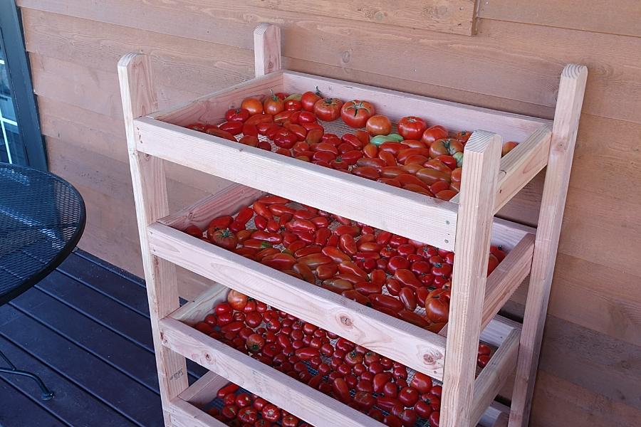 2x4 harvest - drying rack