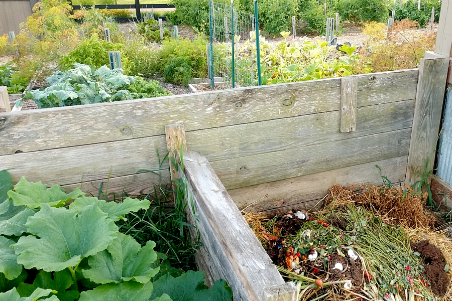 what to compost from the garden