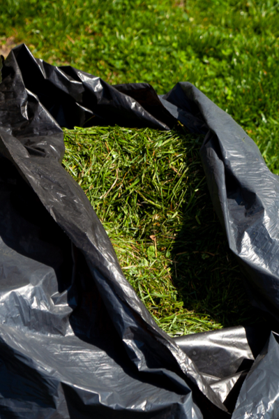 grass clippings - fall compost pile
