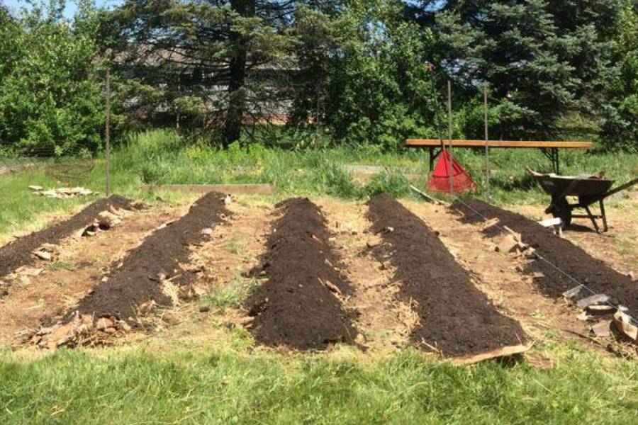 setting up a raised row garden