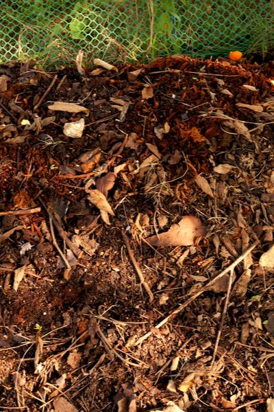 hoew to make leaf compost