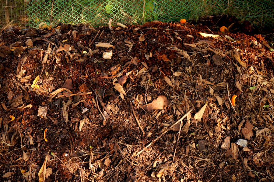how to make compost from leaves