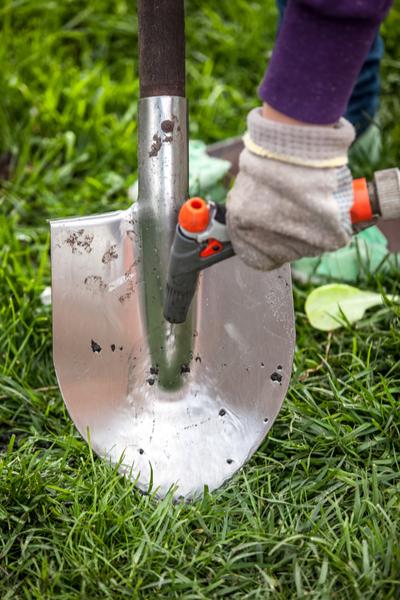 prepare garden tools