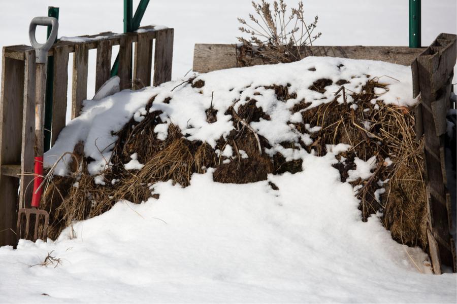 wie man im Winter kompostiert
