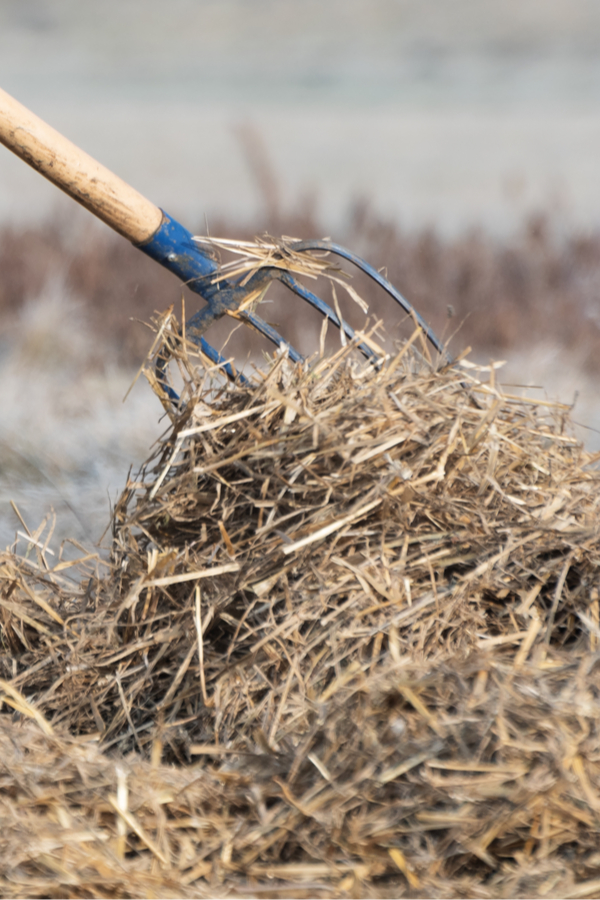 Sådan stoppes ukrudt - mulching