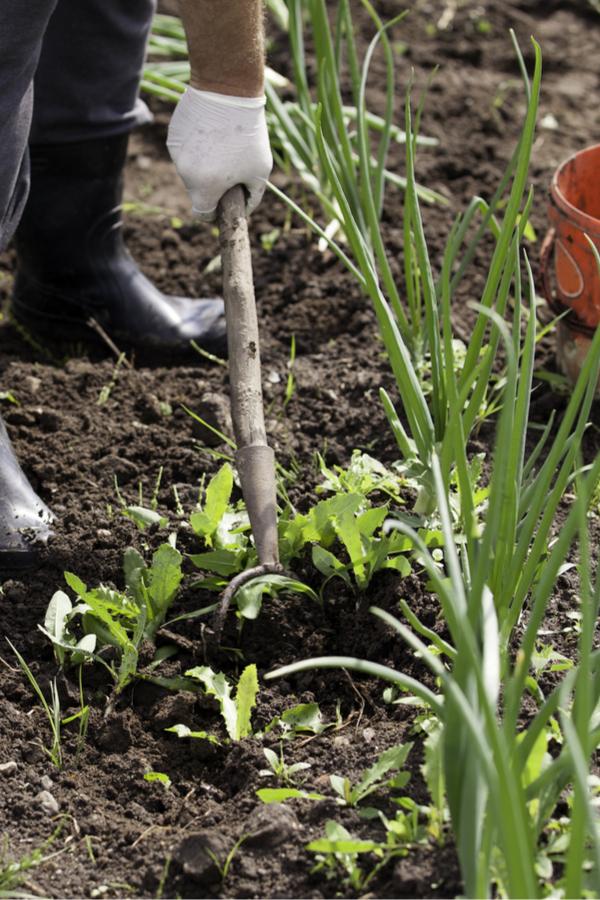 howing a garden