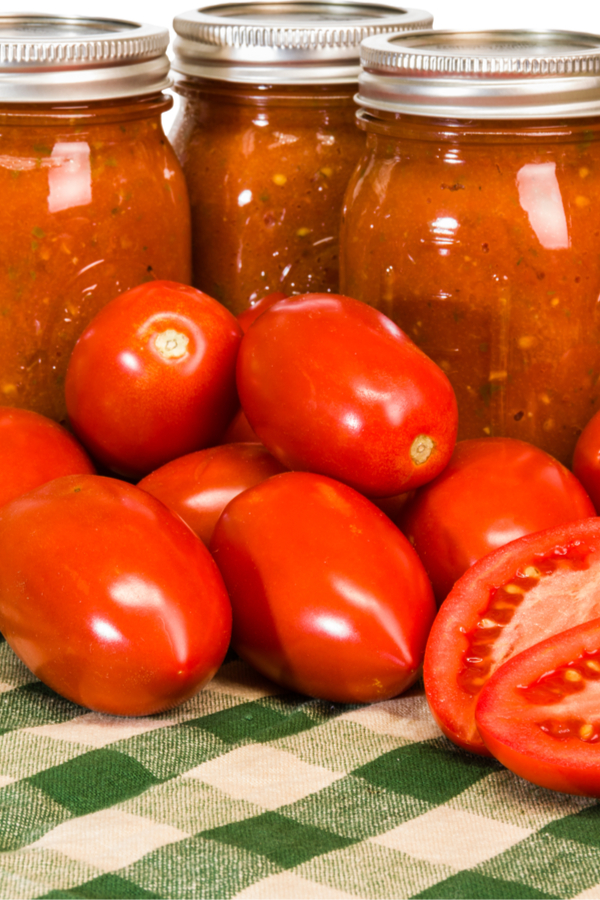 indeterminate canning tomatoes