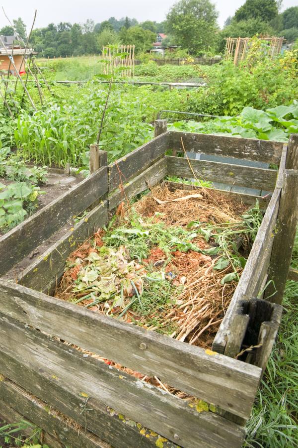 garden compost pile