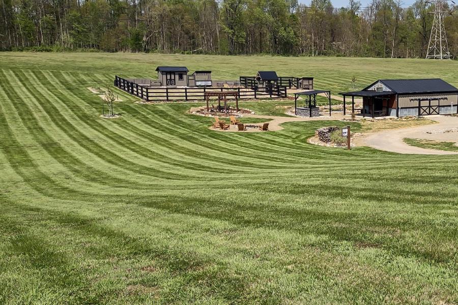 how stripe a lawn