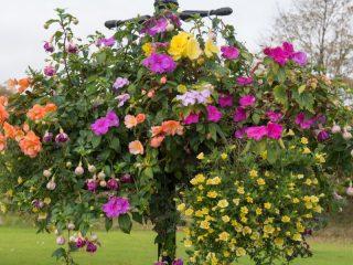 best way to fertilize hanging baskets