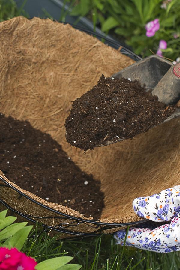good potting soil