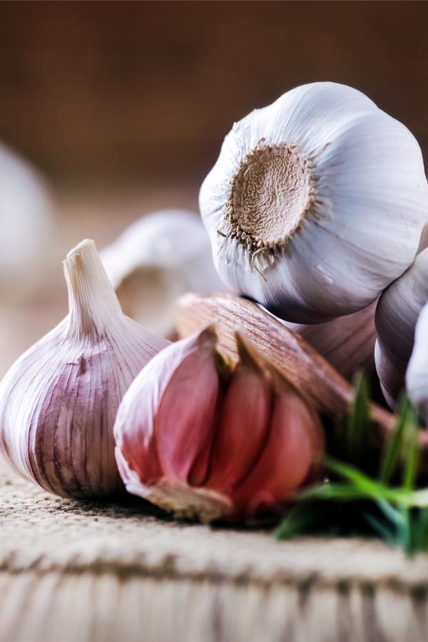 garlic cloves for planting