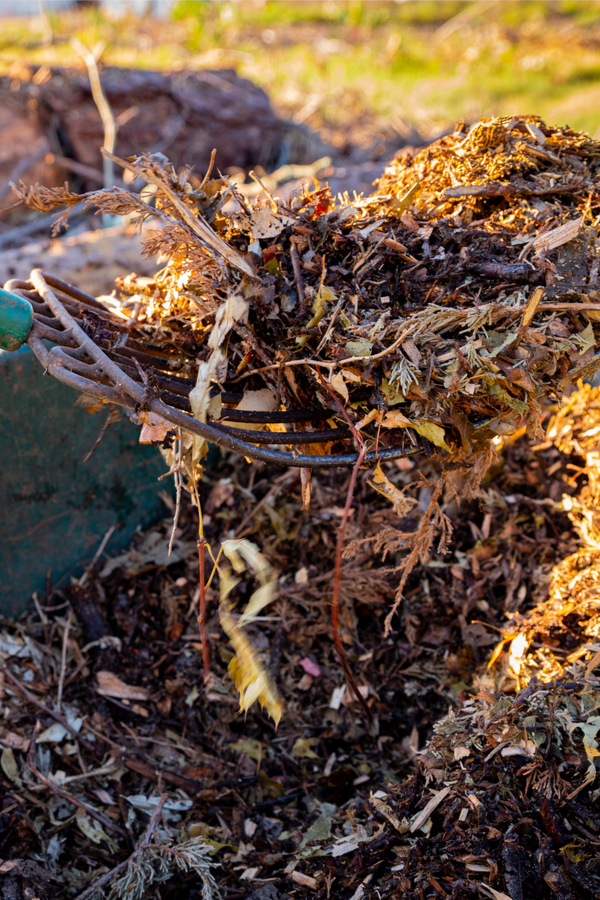 hogyan töltsük meg a kerti talajt levelekkel
